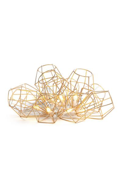 10L Caged Wire String Lights