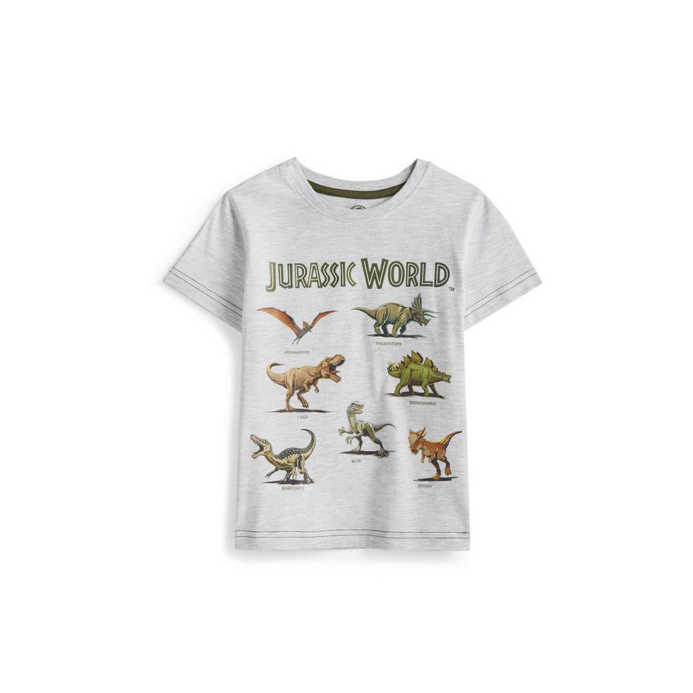 Lego Jurassic World Dinosaur Boy/'s Short Sleeve T-Shirt Tee LJC017A