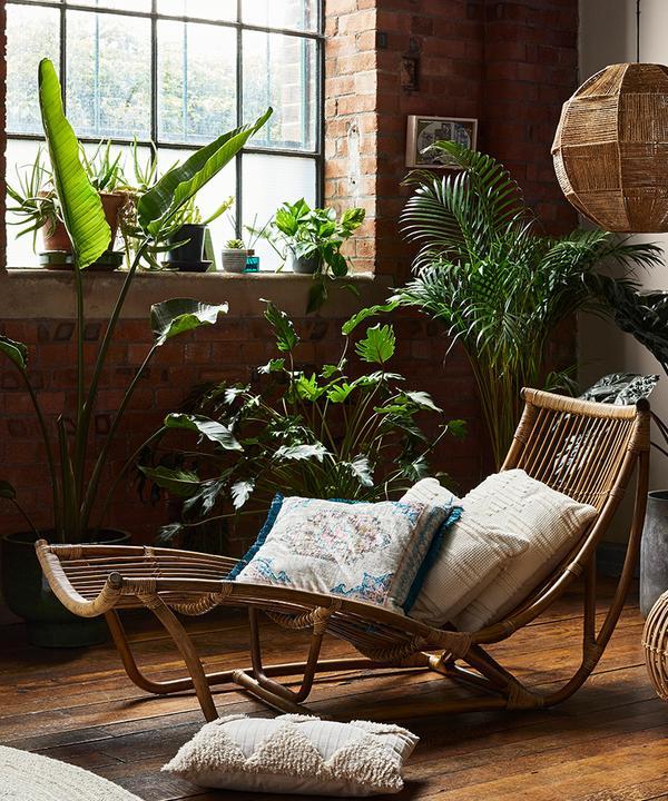 Interieurshot met kussens, rotan en kunstplanten