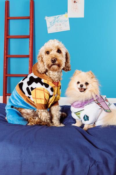 Disney-Haustiere Bild 1