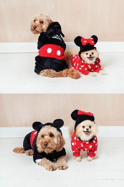 Disney-Haustiere Bild 6
