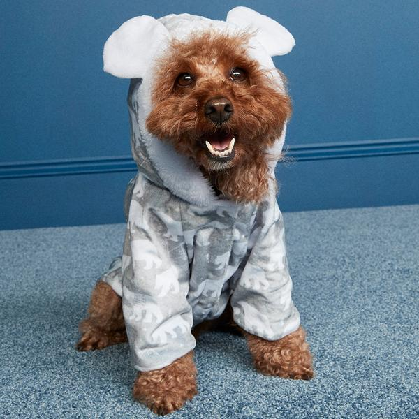 Dog in onesie