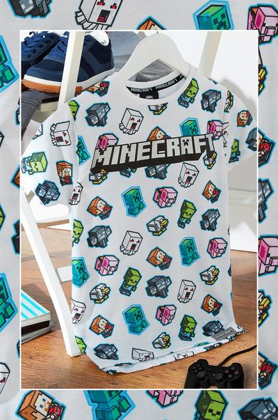 Minecraft kids image