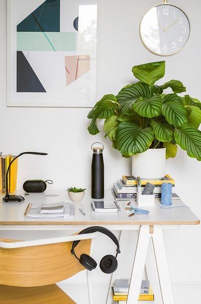 urban-home-desk setting