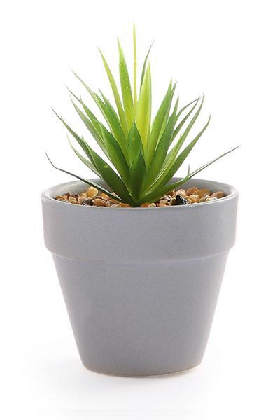 Mini plante artificielle dans pot bleu