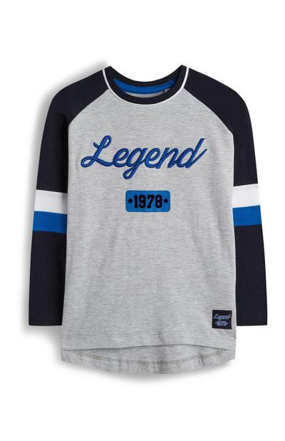 Younger Boy Grey Legend Raglan T-Shirt With Navy Sleeves