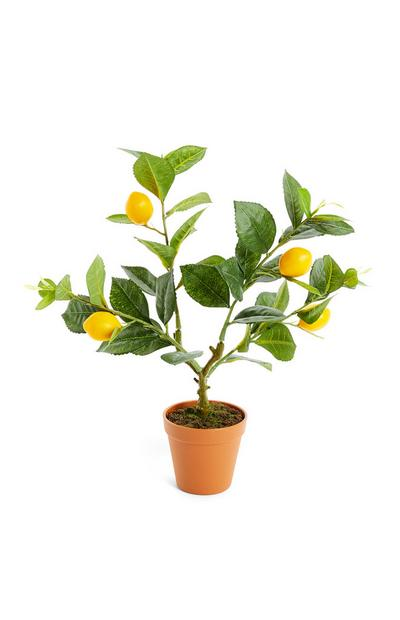 Faux Lemon Tree Pot Plant