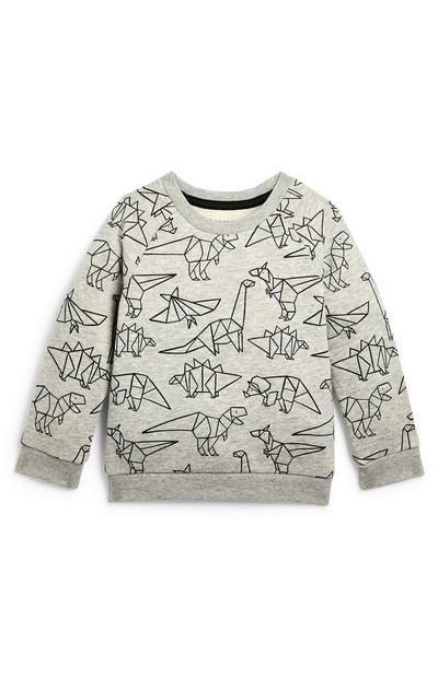 Grijze babysweater met ronde hals en dinoprint, jongens