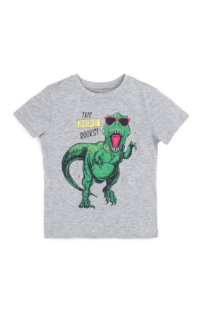 Graues T-Shirt mit Dinosaurier-Motiv (kleine Jungen)
