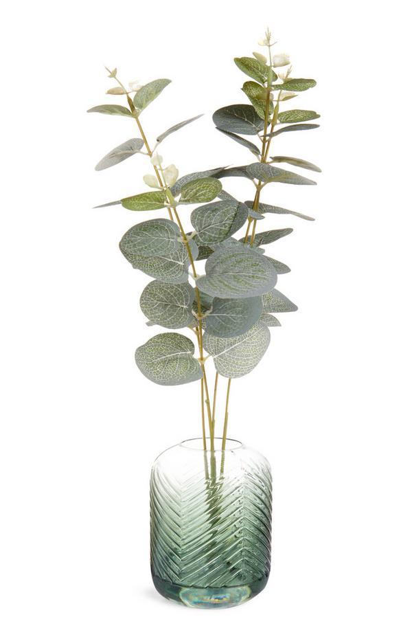 Vase vert avec eucalyptus