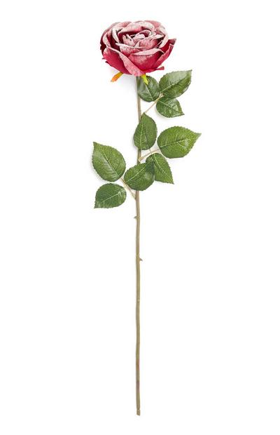 Single Stem Rose