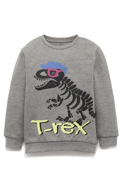Younger Boy Gray T-Rex Crew Neck Sweatshirt