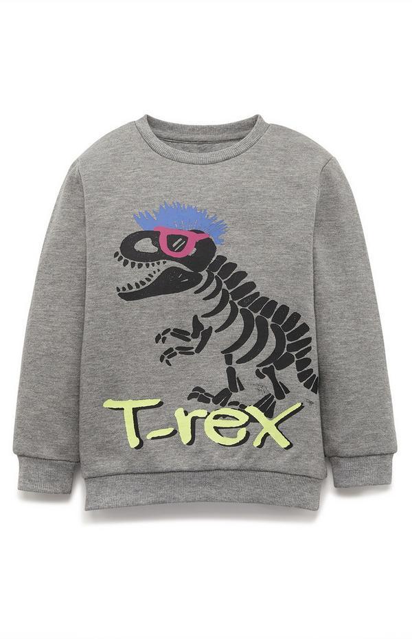 Younger Boy Gray T-Rex Crew Neck Sweatshirt