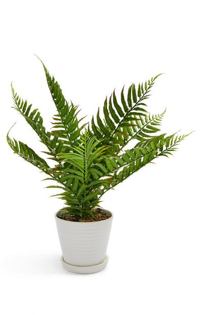 Large Faux Fern In White Pot