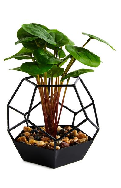 Black Hexagon Glass Pot Faux