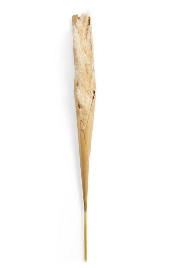 Einzelner, künstlicher Pampasgras-Dekozweig