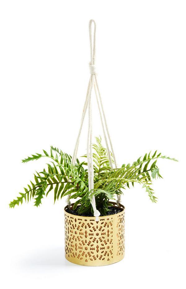 Plant in goudkleurige macraméhanger