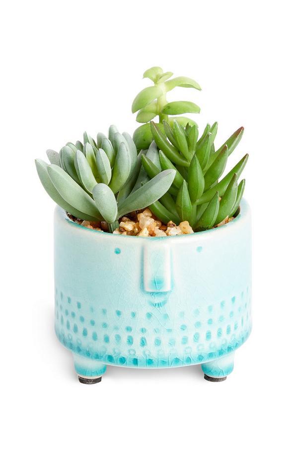 Petits pots de plantes bleus à motifs visages variés