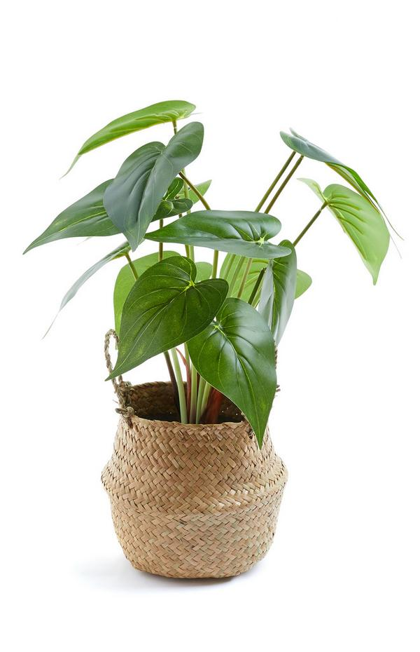 Kunstplant met grote bladeren in gevlochten mand