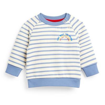 Baby Boy Blue Striped Crew Neck Sweater
