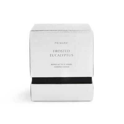 Frosted Eucalyptus Square Boxed Candle
